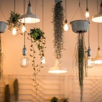 نور در معماری داخلی